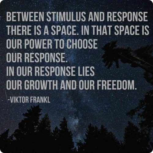 between stimulus and response.jpg